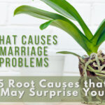 root causes of marriage problems